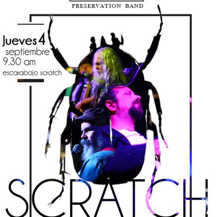 Escarabajo Scratch Bar