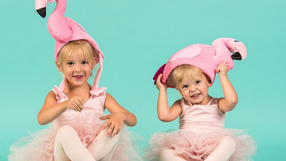 Florrie Flamingo Ballet Terminology Flash Cards