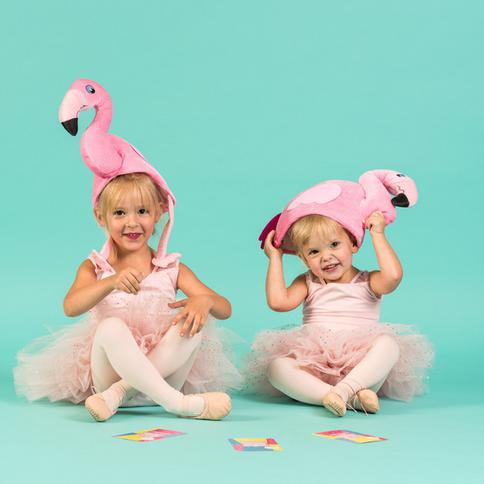 Florrie Flamingo Flashcards_Ballet Termi