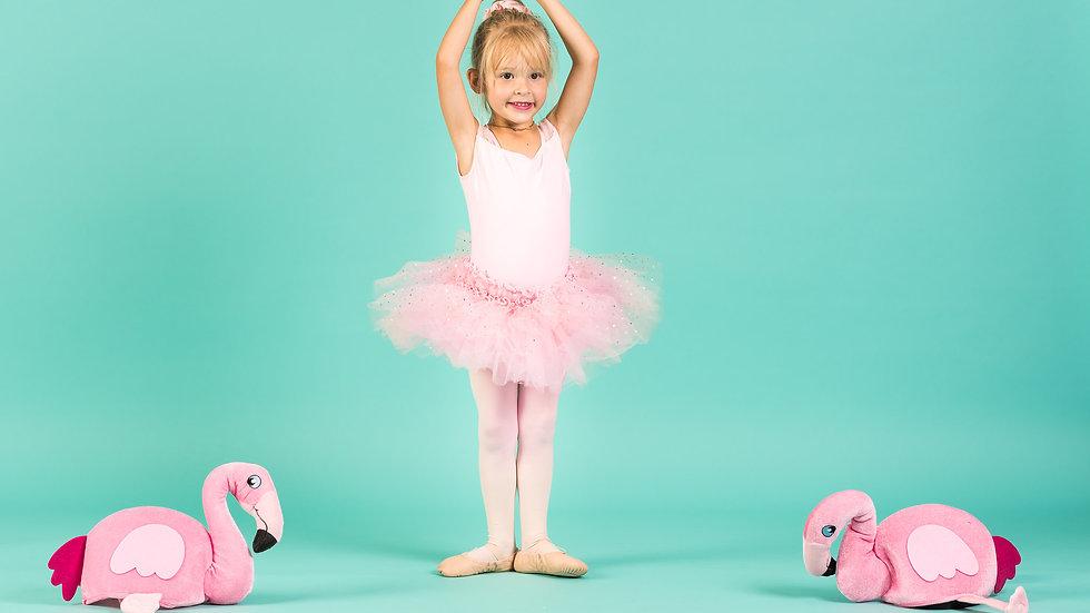 Florrie Flamingo Licensed Studio - Licensing Fee