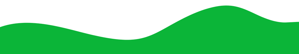 green%20background_edited.png