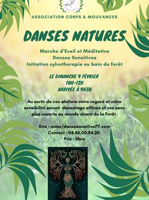 Dimanche 9 Février  -> Atelier Danse Nature