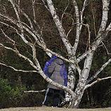 nature hiver (2)_edited.jpg