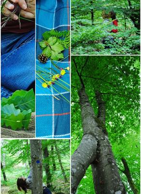 L' Atelier Danse Nature -> Dimanche 14 juin