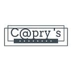 CAPRIS_Plan de travail 1.png