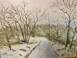 Viv's Lochgair in Winter The Lochside Track