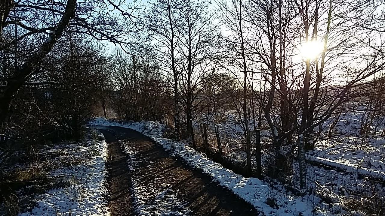 Gordon-pathway