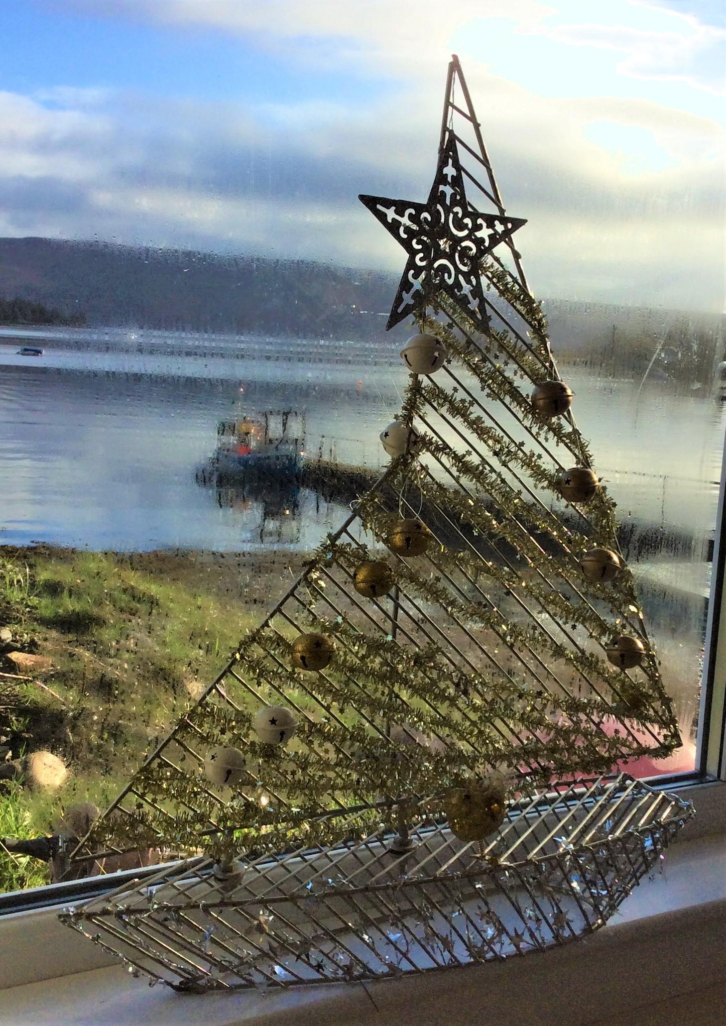 Marion's Christmas sail
