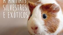 ATENDIMENTO A ANIMAIS SILVESTRES