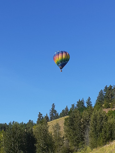 Okanagan Ballooning over Quail Ridge Bou