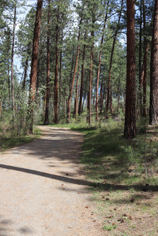 Quail Ridge Linear Park
