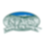 NAS Color Logo.png