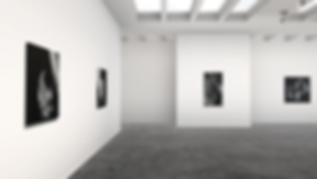 Lift art gallery, virtual exhibition, 3d art show, Damaris Athene, buy art