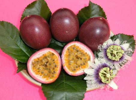酸味と甘みの絶妙なバランス!南国果実パッションフルーツの基礎知識。