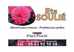 Soulié - 72 - Site.jpg