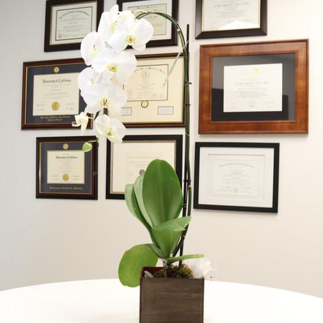 Diploma/Certificates