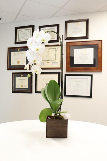 Diploma/Certification