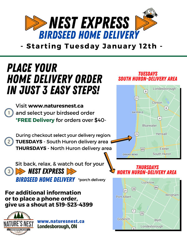 NN-HOME DELIVERY-poster (1).jpg