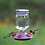 Thumbnail: Lavender Field Top-Fill Glass - Hummingbird Feeder