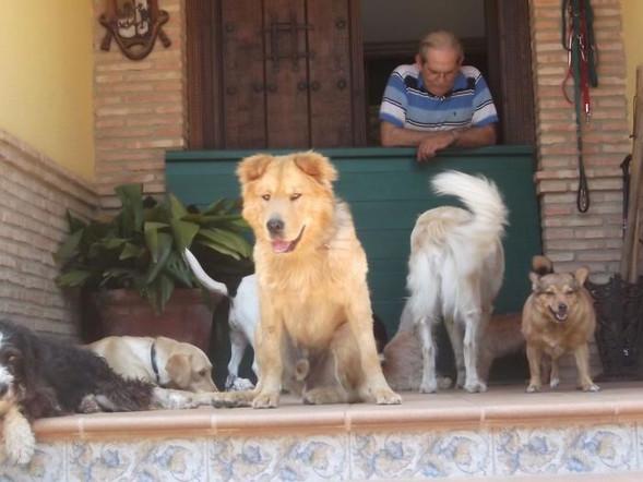 Teddy Andalusien 21.jpg