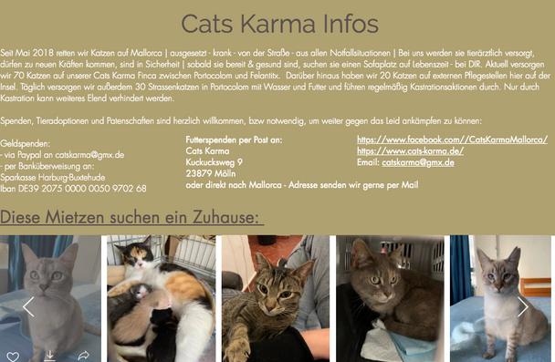 Cats Karma Mallorca Infos