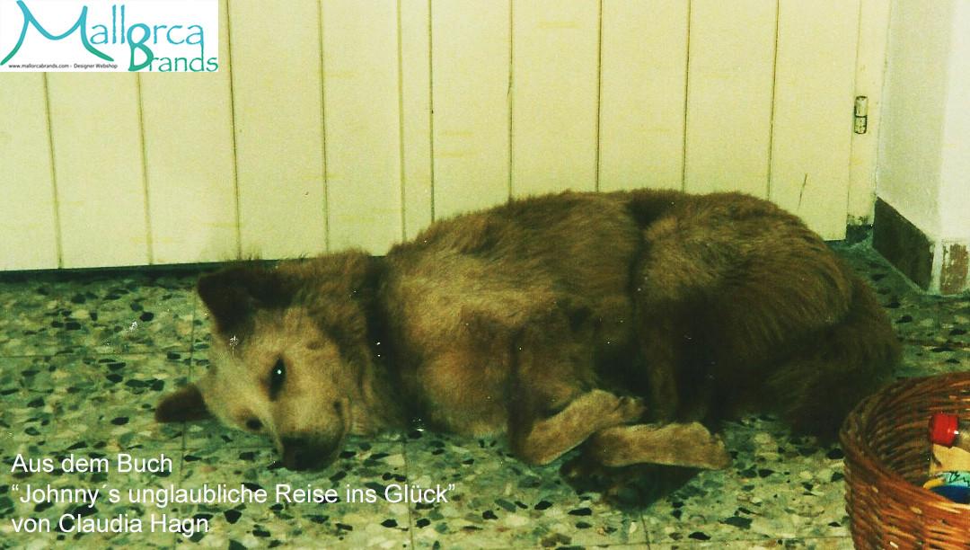 Meine Rettung vor den Hundemördern