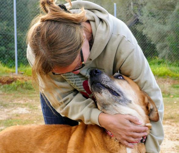 SOS Animal - Anke Schürmann mit Pflegehu