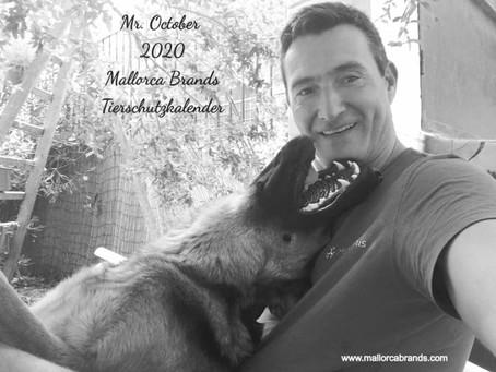 Oktober 2020 - Mallorca Brands Tierschutzkalender: ein toller Typ und eine Reise für die rote Katz!