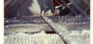 3-1970 Fire Lowden Park Rec Hall.jpg