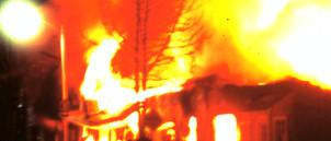 3-19-2011_010.JPG