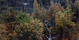 7-13-1994 Brown's Mtn Fire2.jpg