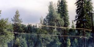 7-13-1994 Brown's Mtn Fire.jpg