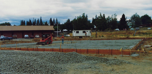 Scan_20200320 (96).png