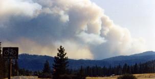 7-13-1994 Brown's Mtn Fire9.jpg
