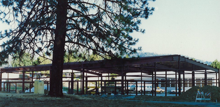 Scan_20200320 (49).png