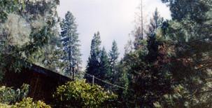 7-13-1994 Brown's Mtn Fire5.jpg