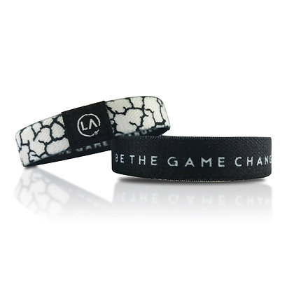 Be The Game Changer (The REVISION Band)