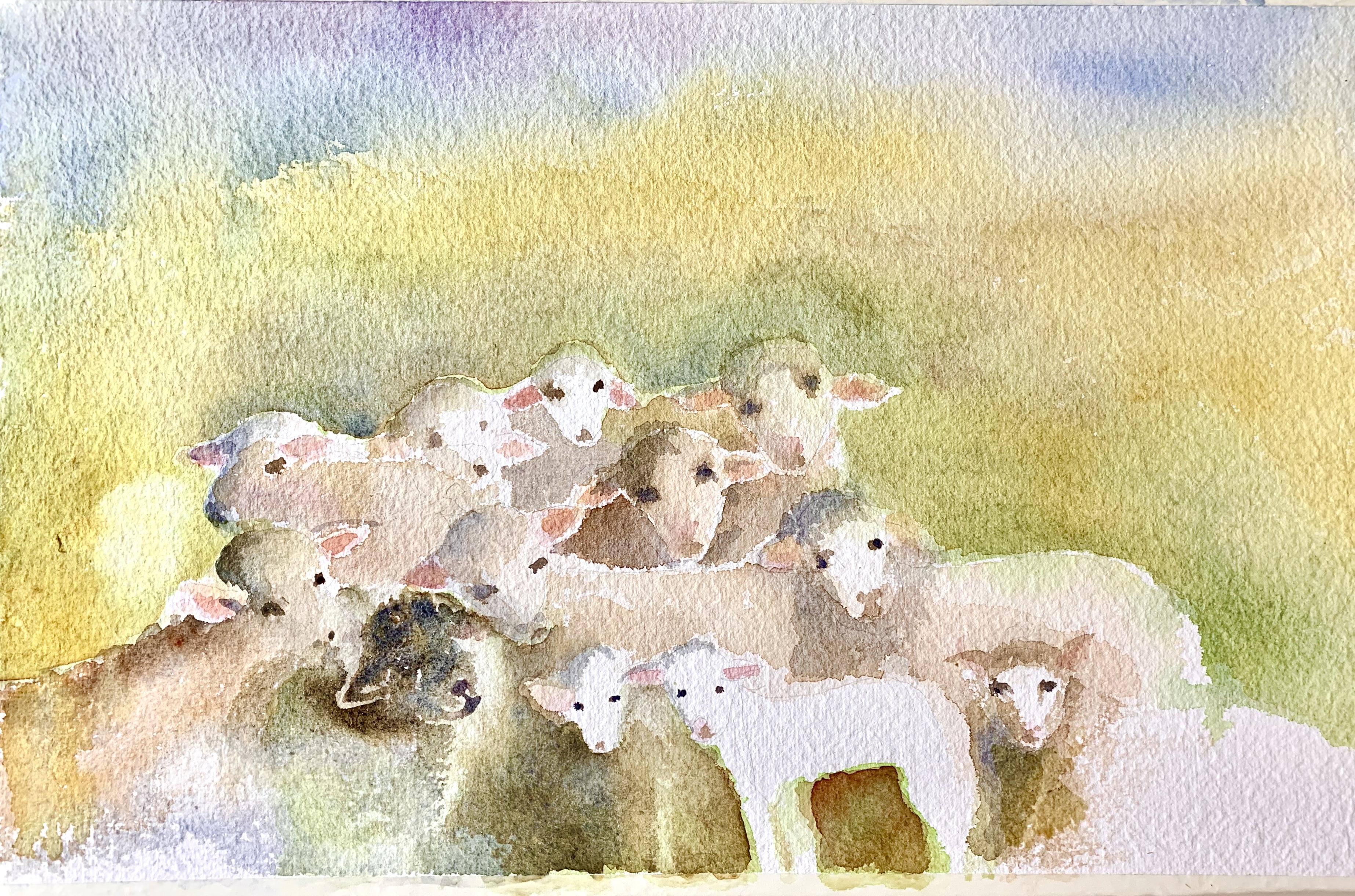 les moutons de Jean