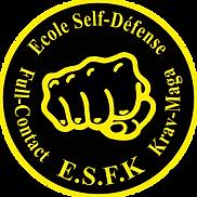 cours de Krav-Maga et self-defense ecole de sport club d'art martiaux à cannes esfk full contact et boxe anglaise