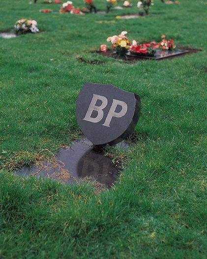 Logo_RIP_BP_Image.jpg