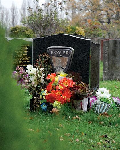 Logo_RIP_Rover_Image.jpg