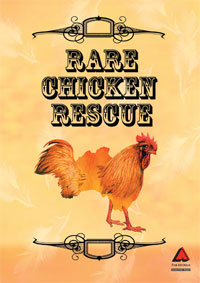 Rare Chicken Rescue documentary