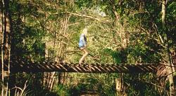 Garden Short Film