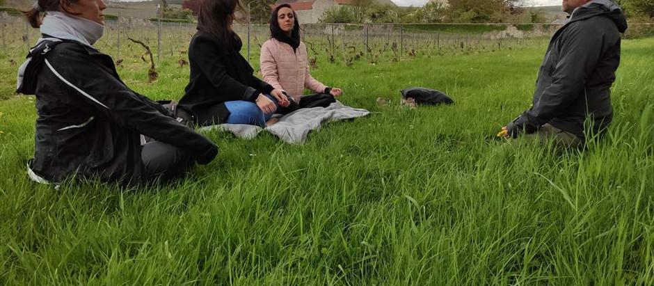L'été sera Zen dans l'Aisne