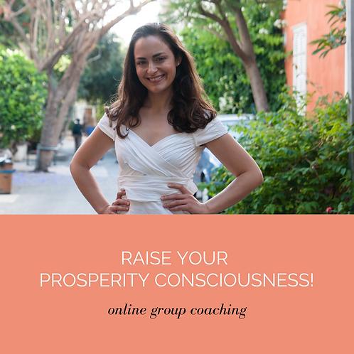 Raise Your Prosperity Consciousness Membership Program