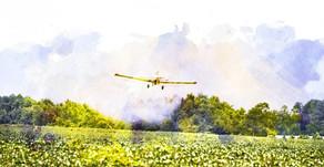 Agrotóxicos intoxicaram 26.000 brasileiros em dez anos