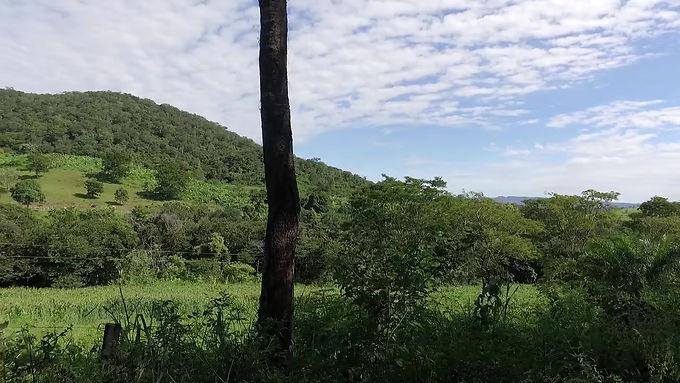 Goiânia/GO: o grito por Terra