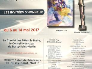 Du 6 au 14 Mai 2017: Le Salon de Bussy-St-Martin