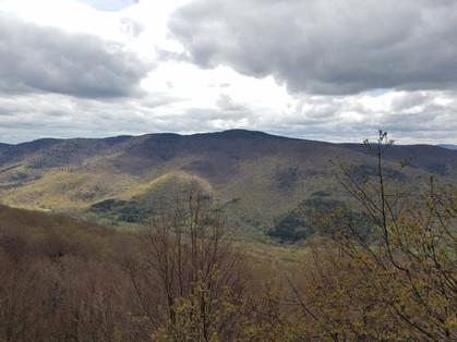 Rusk Mountain #2