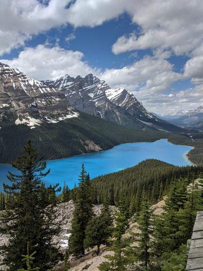 Western Canada - Part 6 - Peyto Lake